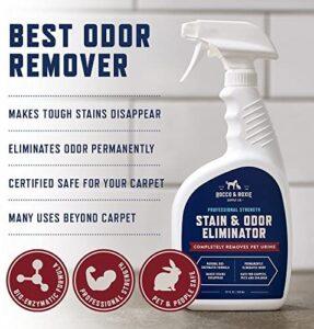 pet stain odor remover